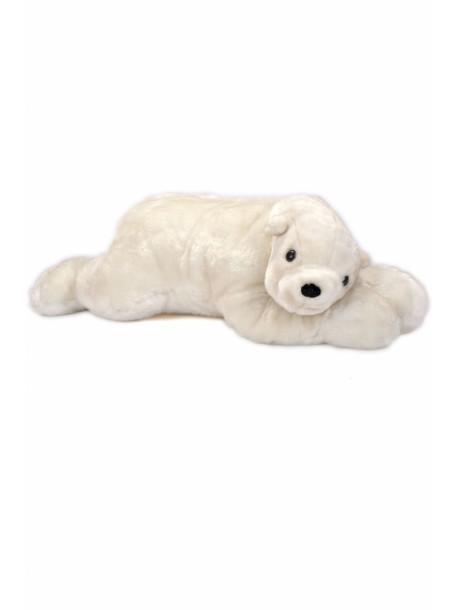 Urs polar de plus